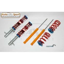 SUSPENSION ROSCADA V-MAXX FORD FOCUS I