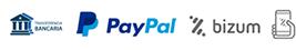 Métodos de pago Paypal, Bizum